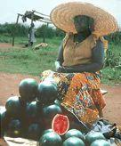172 LOST CROPS OF AFRICA A roadside watermelon vender holds market in Ghana.