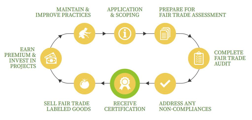 Fair Trade Certification Cycle Overview of the process along the Fair Trade journey of continuous improvement.