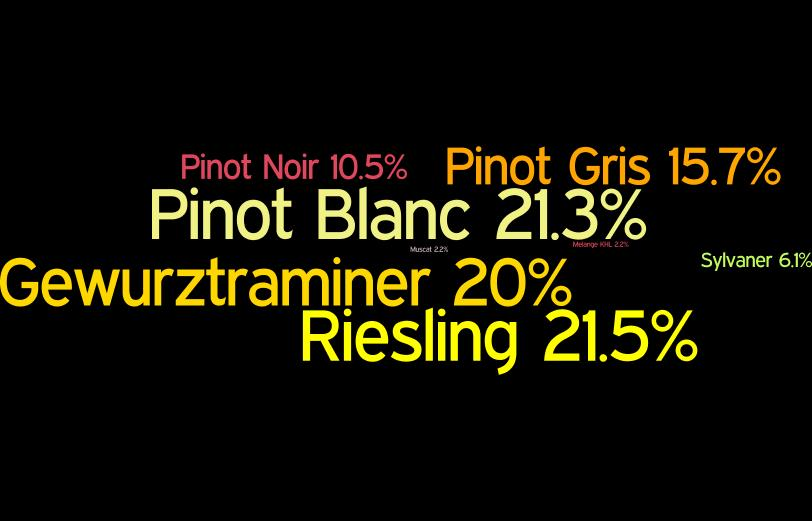 ALSACE WINE PRODUCTION BY NUMBERS A report compiled by the Back In Alsace Project 1 from data released in May 2017 by the Conseil Interprofessional des Vins d Alsace (CIVA 2 ).