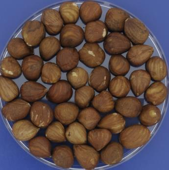 Methods for assessment of nut qualities Basic nut quality: Fat content via Caviezel and GC