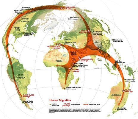 Hominids migrated from Africa to Asia before they died out Human migrated all around the world By 9000 BC, humans lived on all