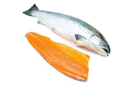 B.C. INTERNATIONAL EXPORTS SALMON & TROUT PRODUCTS In, exports of farmed salmon (Atlantic, chinook and coho) reached $534 million with shipments to 13 international markets.