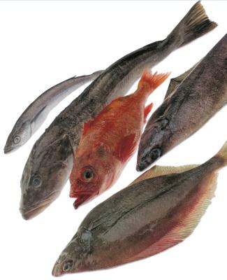 B.C. INTERNATIONAL EXPORTS GROUNDFISH PRODUCTS B.C. exported groundfish to 47 international markets in, including five new markets - Namibia, Columbia, Azerbaijan, Dominica and Macau.