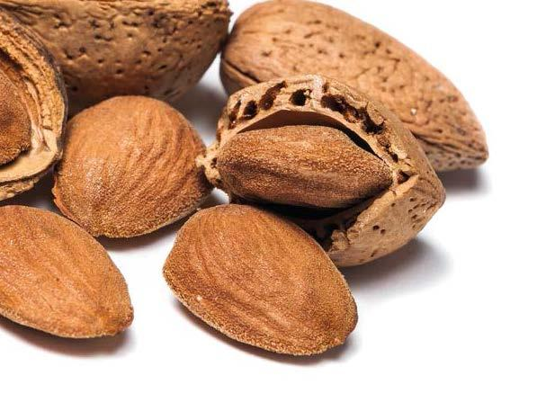 ALMONDS PRODUCTION WORLD ALMOND PRODUCTION Kernel Basis (Metric Tons) Almond production keeps increasing year on year. It has reached over 1.