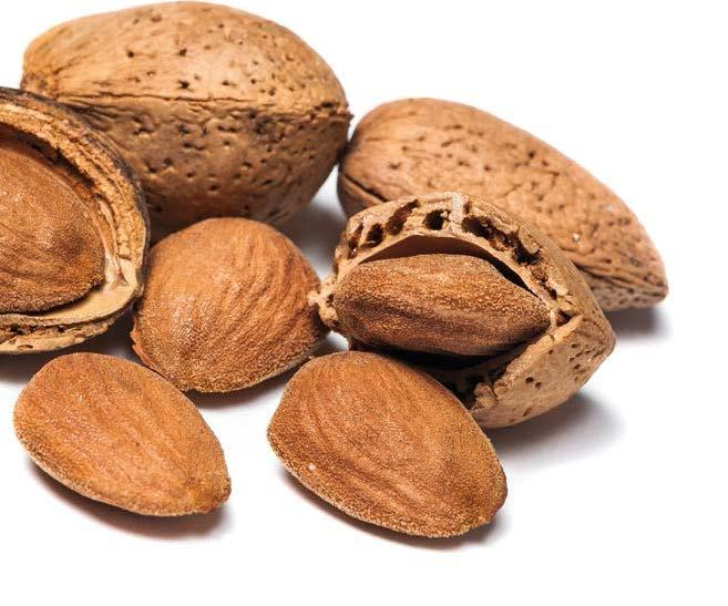 ALMONDS ALMOND IMPORTS / Shelled + In-shell (KB)* / (Metric Tons) COUNTRY 2006 2007 2008 2009 2010 2011 2012 2013 2014 2015 2016 Growth 2006-2016 Spain 57,356 58,217 69,244 75,869 63,025 77,358
