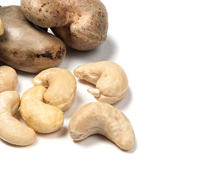 CASHEWS PRODUCTION WORLD CASHEW PRODUCTION Kernel Basis (Metric Tons) Cashew production reached near 790,000 metric tons (kernel basis) in the 2017/2018 season, raised by 32% compared to the previous
