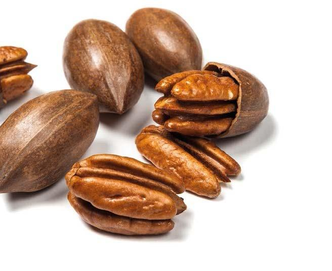 PECANS PECAN IMPORTS / Shelled (Metric Tons) COUNTRY 2006 2007 2008 2009 2010 2011 2012 2013 2014 2015 2016 Growth 2006-2016 USA* 20,680 18,792 26,489 22,634 29,089 20,441 22,636 18,448 22,972 35,252