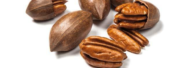 COUNTRY ESTIMATED WORLD PECAN CONSUMPTION (Kernel Basis) 2012 2013 2014 2015 2016 USA 67,826 0.195 0.780 45,109 0.159 0.636 48,531 0.218 0.872 65,139 0.202 0.810 64,988 0.202 0.807 Mexico 16,837 0.