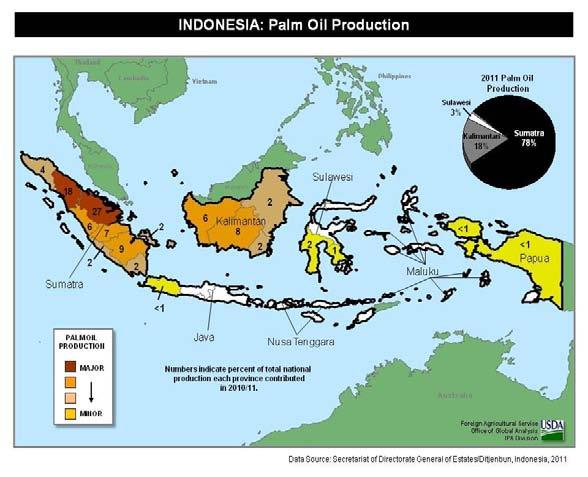 Indonesia Palm Oil: Growth to Continue for 2012/13 Indonesia s 2011/12 palm oil production is forecast at 25.9 million tons, up 0.5 million or 2 percent from last month.